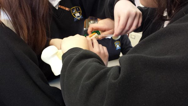 Students get to grips with